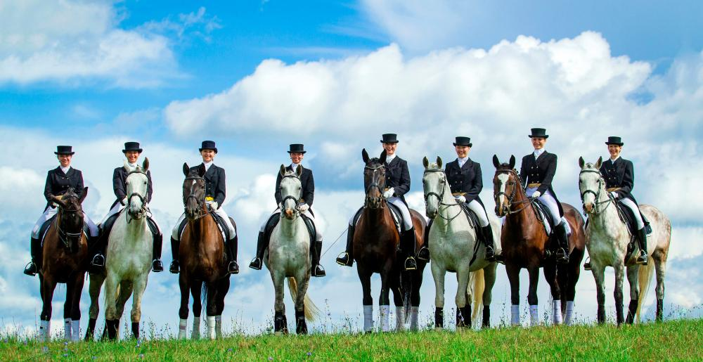 A group of women on dressage horses