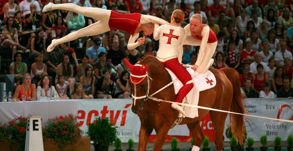 A group in a vaulting contest