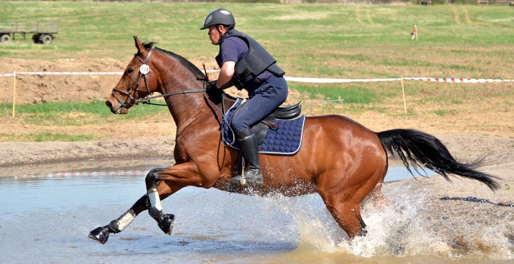 Rider and horse in the water during a Cross-country
