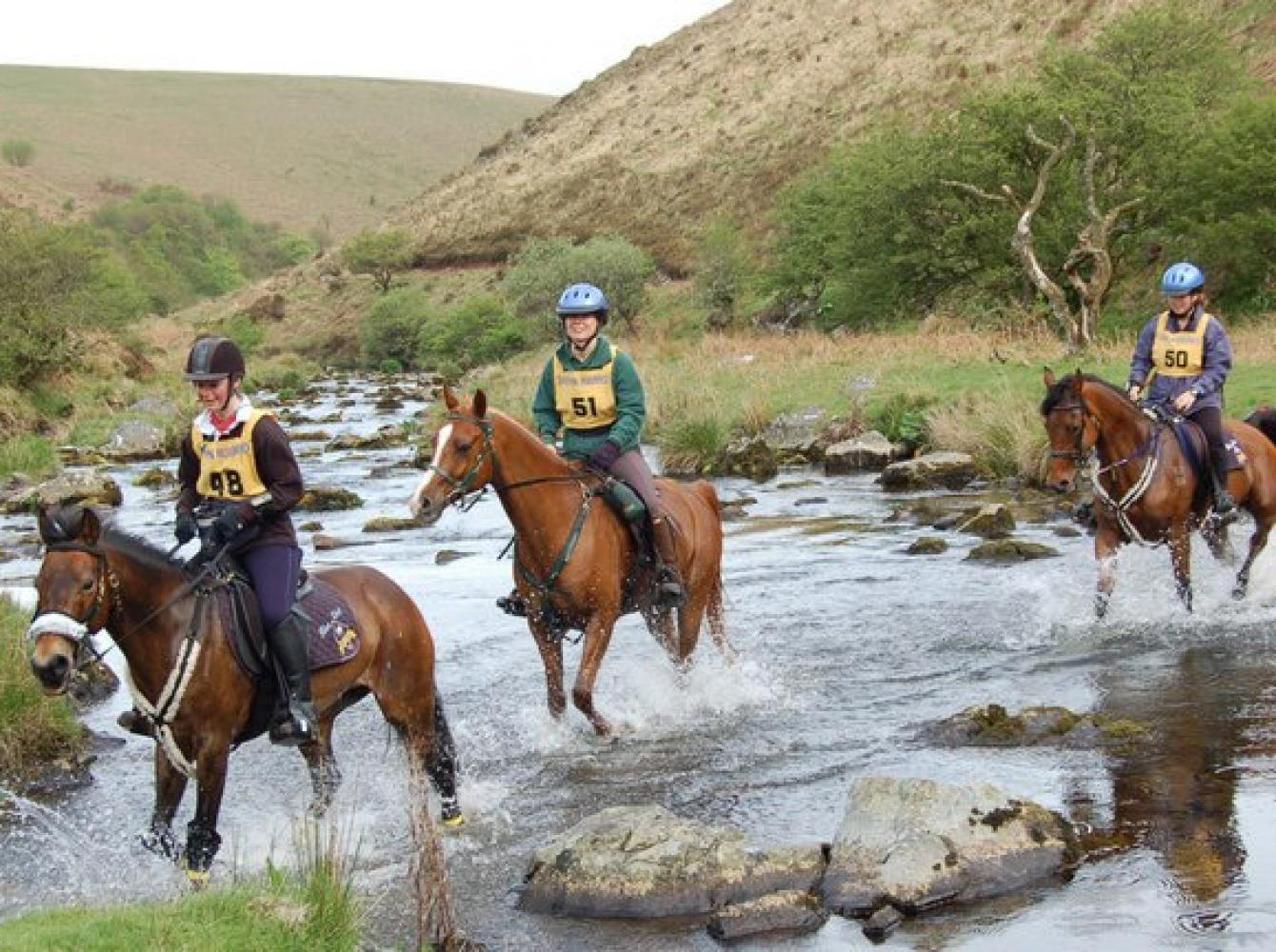 Passing a stream in an endurance contest
