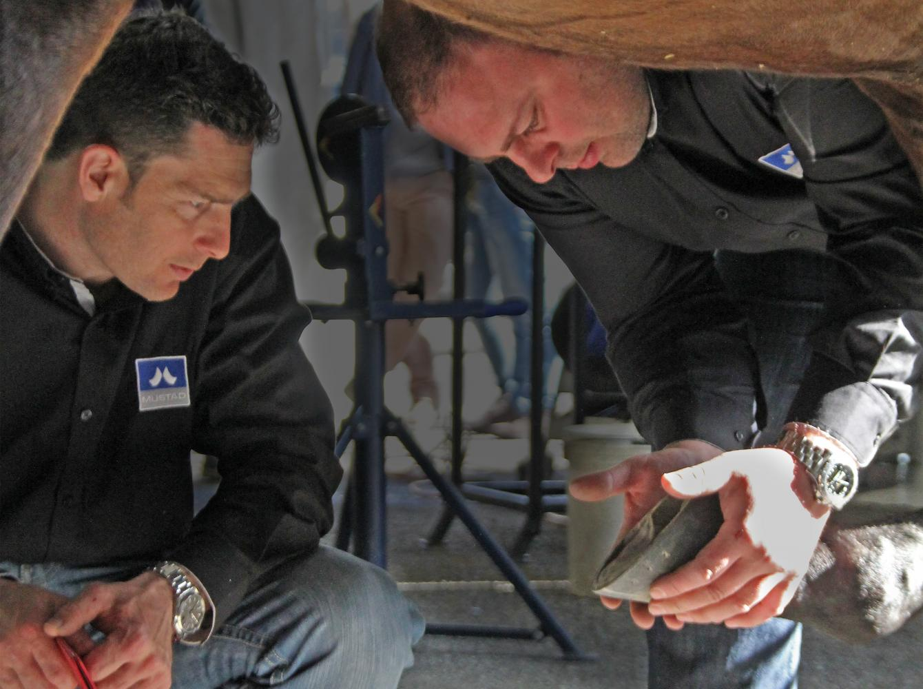 2 farriers discussing a shoeing solution