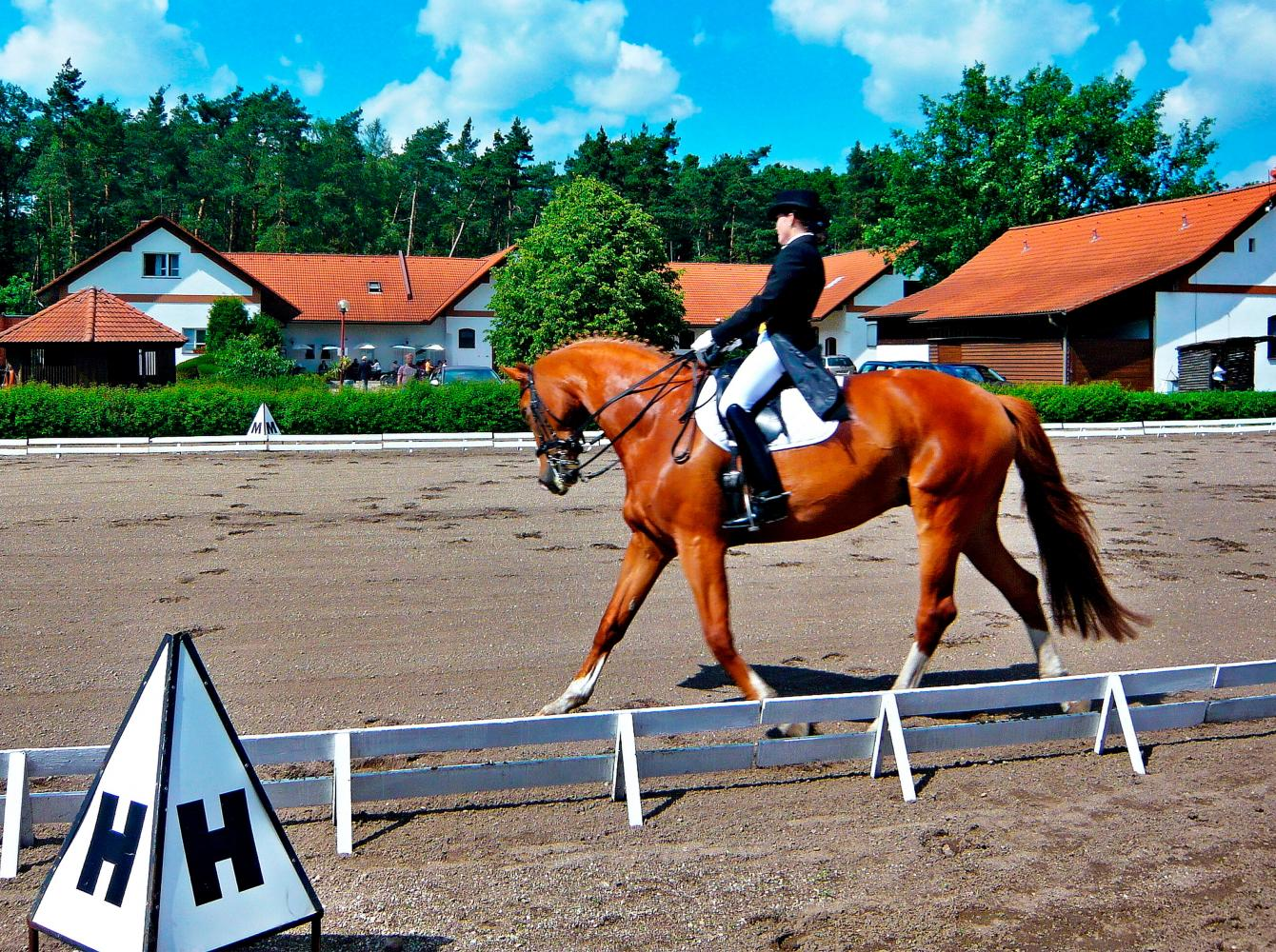 Outdoors dressage in Koleda, Czech Republic