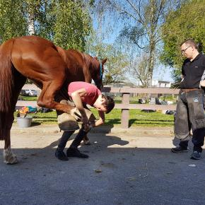 Mustad Sales Manager Fabrice Cavé giving instructions to a VET student in Nantes, France