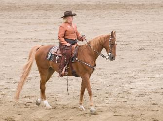 Horse and rider in a Western pleasure riding contest