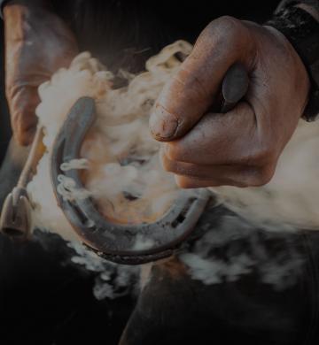A horseshoe is hot fitted by a farrier